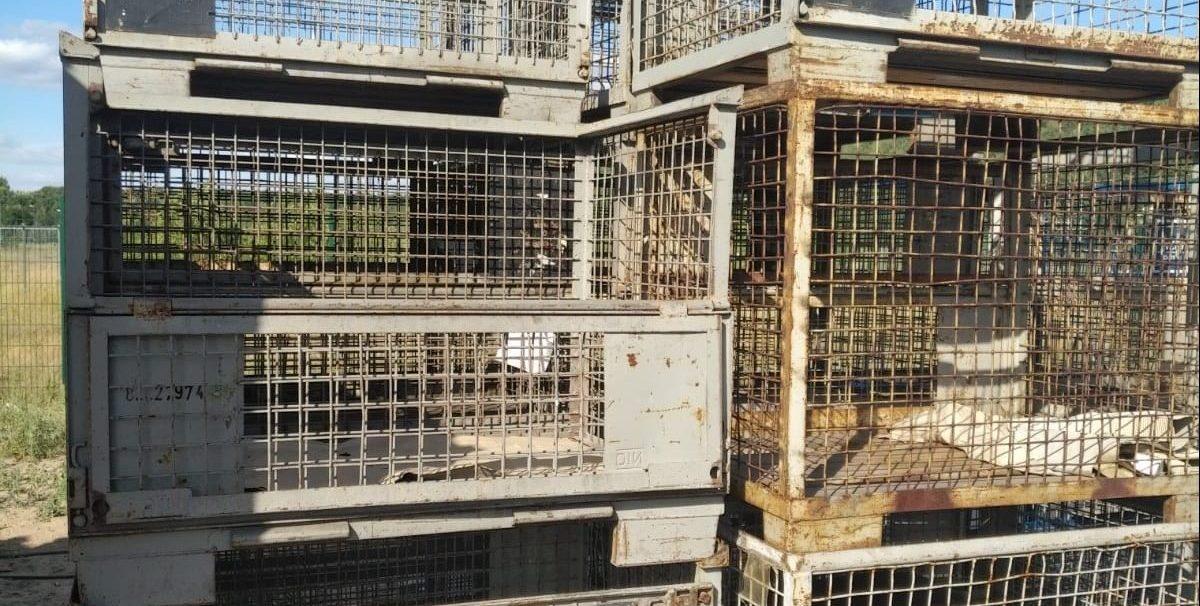 Gitterboxen 3